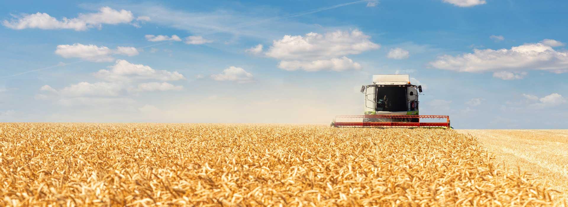 agroalimentario-FI-Group